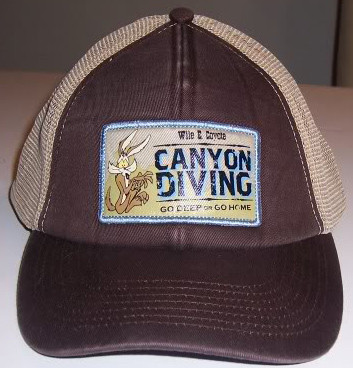 Looney Toons Wile E. Coyote Canyon Diving Adjustable Hat