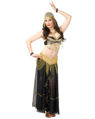 Women's Belly Dancer Sexy Costume