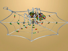 Beaded Spider in Web