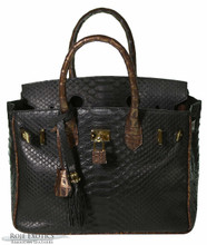 Classic 30 - Black Python Trimmed in Bronze Caiman