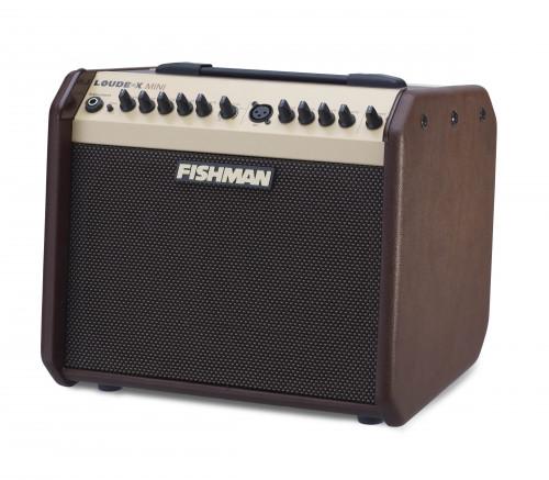 fishman loudbox mini 60 watt acoustic guitar amp60 Watt Guitar Amplifier #18
