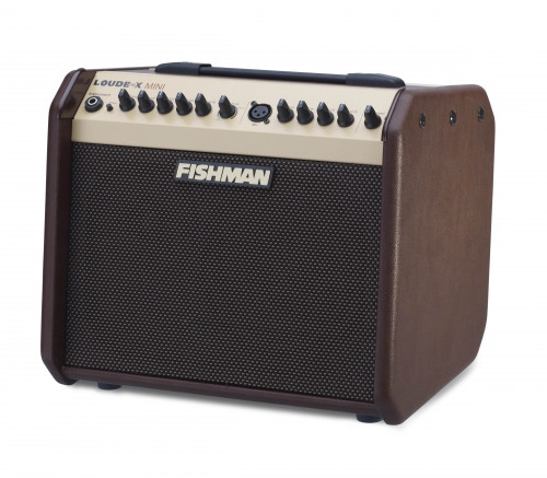 Fishman Loudbox Mini 60-Watt Acoustic Guitar Amp
