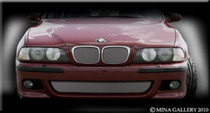 BMW 5 Series M5 Top Bottom Mesh Grille Grill Package 96-03