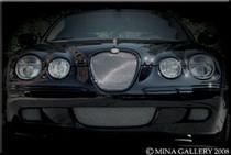 Jaguar S-Type 2008 Lower Mesh Grille Grill Set