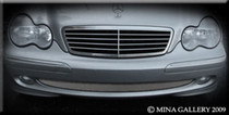 Mercedes C-Class 01-07 Lower Mesh Grille Grill 1 Piece