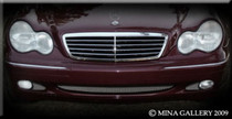 Mercedes C-Class 01-07 Lower Mesh Grille Grill 3 Piece