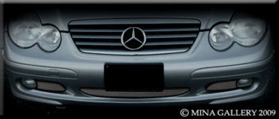 Mercedes C-Class Coupe 01-07 Lower Mesh Grille Grill