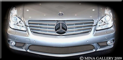 Mercedes CLS55 CLS63 Amg Lower Mesh Grille Grill 05-09
