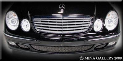 Mercedes E-Class E320 Lower Mesh Grille Grill 03-06