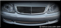 Mercedes S-Class Lower Mesh Grille Grill 00-02 S430