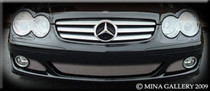 Mercedes SL Sl550 Lower Mesh Grille Package Grill 07-08