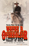 Valley of Guns by Wayne D. Overholser (eBook)