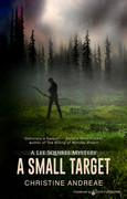 A Small Target by Christine Andreae (eBook)