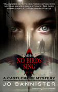 No Birds Sing by Jo Bannister (eBook)