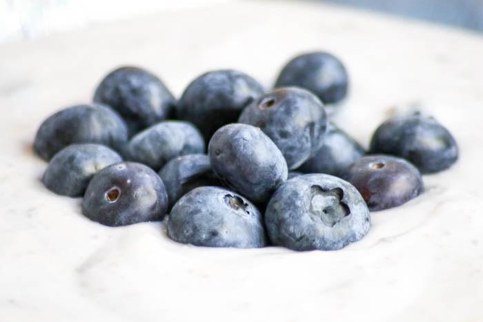 blueberry-cream-horizontal-5.jpg