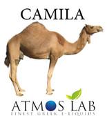 Atmos-Lab-Camila