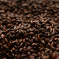 Briess Roasted Barley 300-325L, 1lb