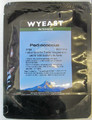 Wyeast 5733 Pediococcus Cerevisiae