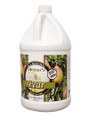Pear Fruit Wine Base, 128 oz