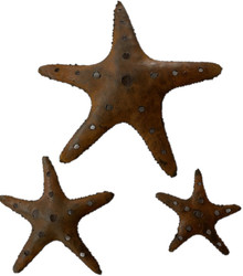 Metal Starfish - Set of 3