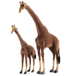 Giraffe: Large