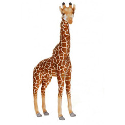 Giraffe: Medium