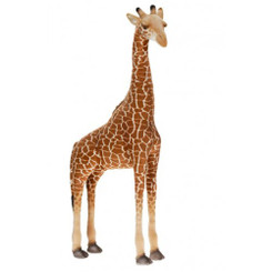 Giraffe: Ride-On
