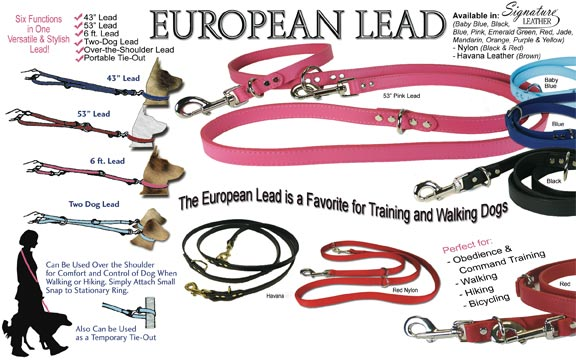 europeanleadad.jpg