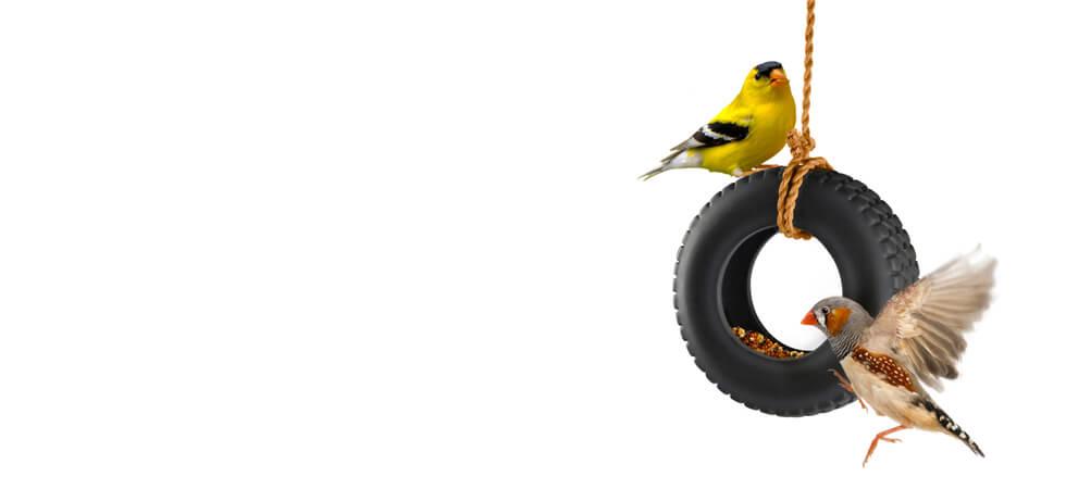 Bird Feeder Swing