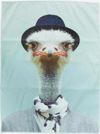 Tea Towel Ostrich | The Design Gift Shop