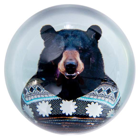 Paperweight Bear from the Zoo Portraits | The Design Gift Shop