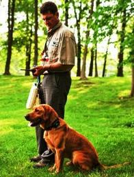 dog-training-with-dt-systems-h20-plus-remote-trainer.jpg