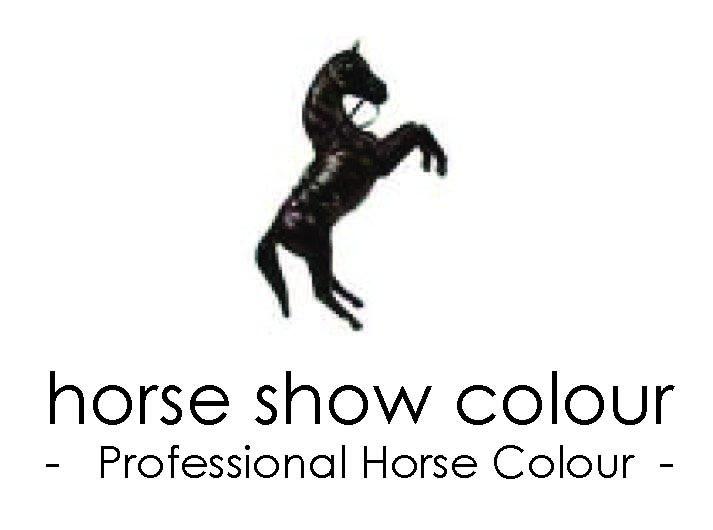 horse-show-colour-logo.jpg
