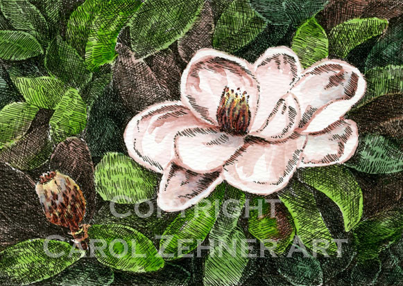 Magnolia Watercolor Art