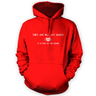 They Are Not Cat Hairs Hoodie