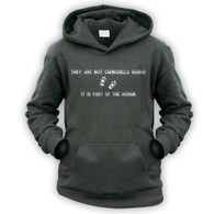 They Are Not Chinchilla Hairs Kids Hoodie