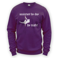 Assistant by Day Pole Dancer by Night Sweater