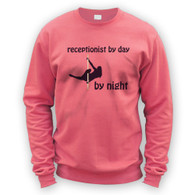 Receptionist by Day Pole Dancer by Night Sweater
