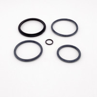 Beech 33 CD1 Nose Strut Service Kit  (TB33NS-1)-SkySupplyUSA