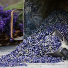 Culinary Lavender Cooking For Sale