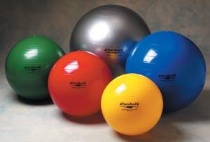 HYGENIC/THERA-BAND EXERCISE BALLS