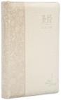 S27SS10J2《聖經新譯本》心靈關懷聖經 標準版 淺棕色儷皮金邊 簡 神字版