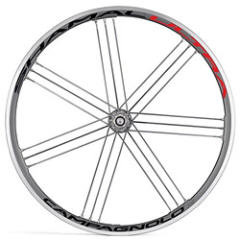 Campagnolo Shamal Ultra Rear Wheel