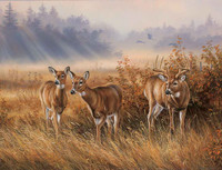 Deer Hunting Theme 240-34a-5 Artwork Micro Fiber Cleaning Cloth
