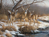 Deer Hunting Theme 240-34a-6 Artwork Micro Fiber Cleaning Cloth