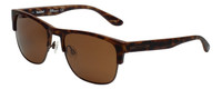 Timberland TB9091-49H Designer Polarized Sunglasses in Matte Dark Brown with Brown Lens