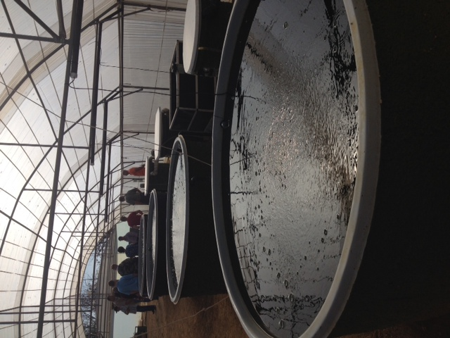 RAS Aquaculture Fish Farming Tanks