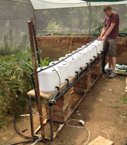 How To Build A Dutch Bucket Plant Grow Area For Your