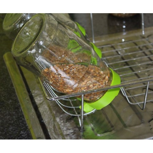 sprout-lids2.jpg