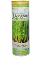 Wheat Grass Seeds  - 200g Tube